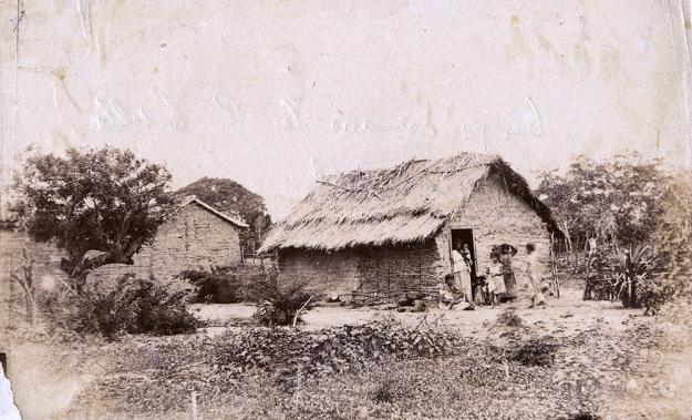 CAMPO CERCANO DE PUERTO CABELLO, PASO REAL, CIRCA 1890
